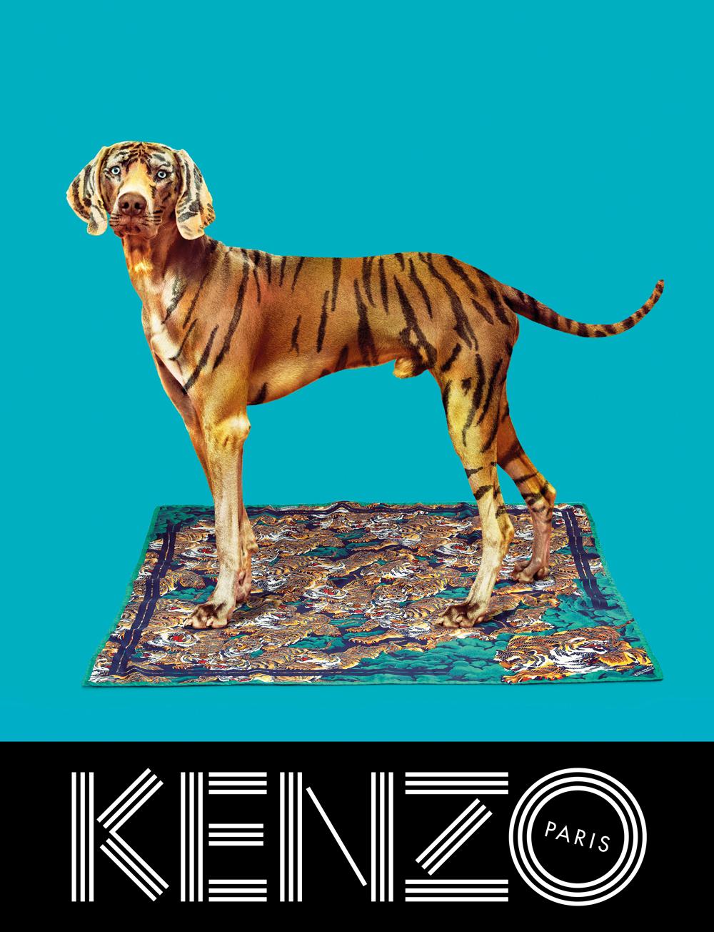 Kenzo fw 2013 ad campaign by Pierpaolo Ferrari, Micol Talso