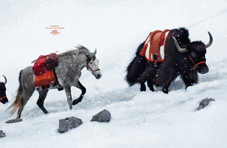 Hermès fall/winter 2008/09 ad campaign