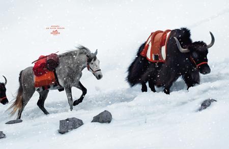 Hermès fall/winter 2008/09 ad campaign
