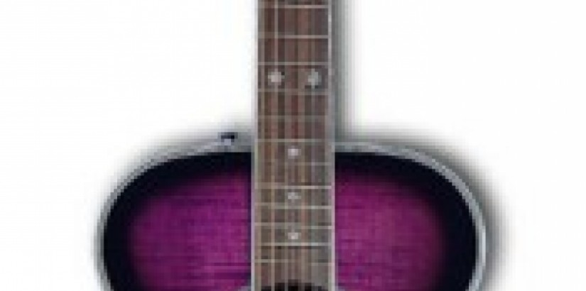 Daisy Acoustic Purple Guitar